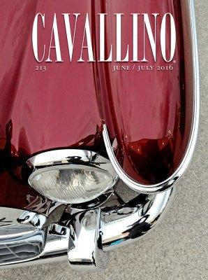 CAVALLINO N.213