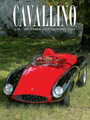 CAVALLINO N.228