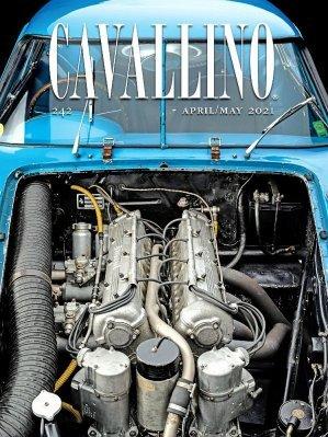 CAVALLINO N.242