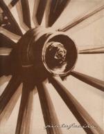 PININFARINA 1966 (N. 7)